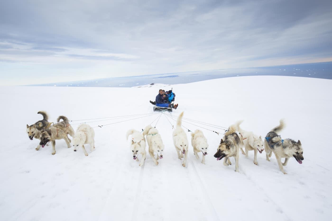 Hundeslædekørsel på toppen af Lyngmark gletsjeren om sommeren. Foto Henrik Kaarsholm – Hotel Disko Island, Visit Greenland