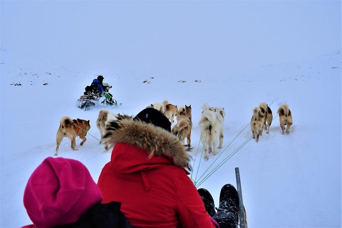 Snowmobile and dogsledding in East Greenland. Photo by Tasiilaq Tours - Visit Greenland