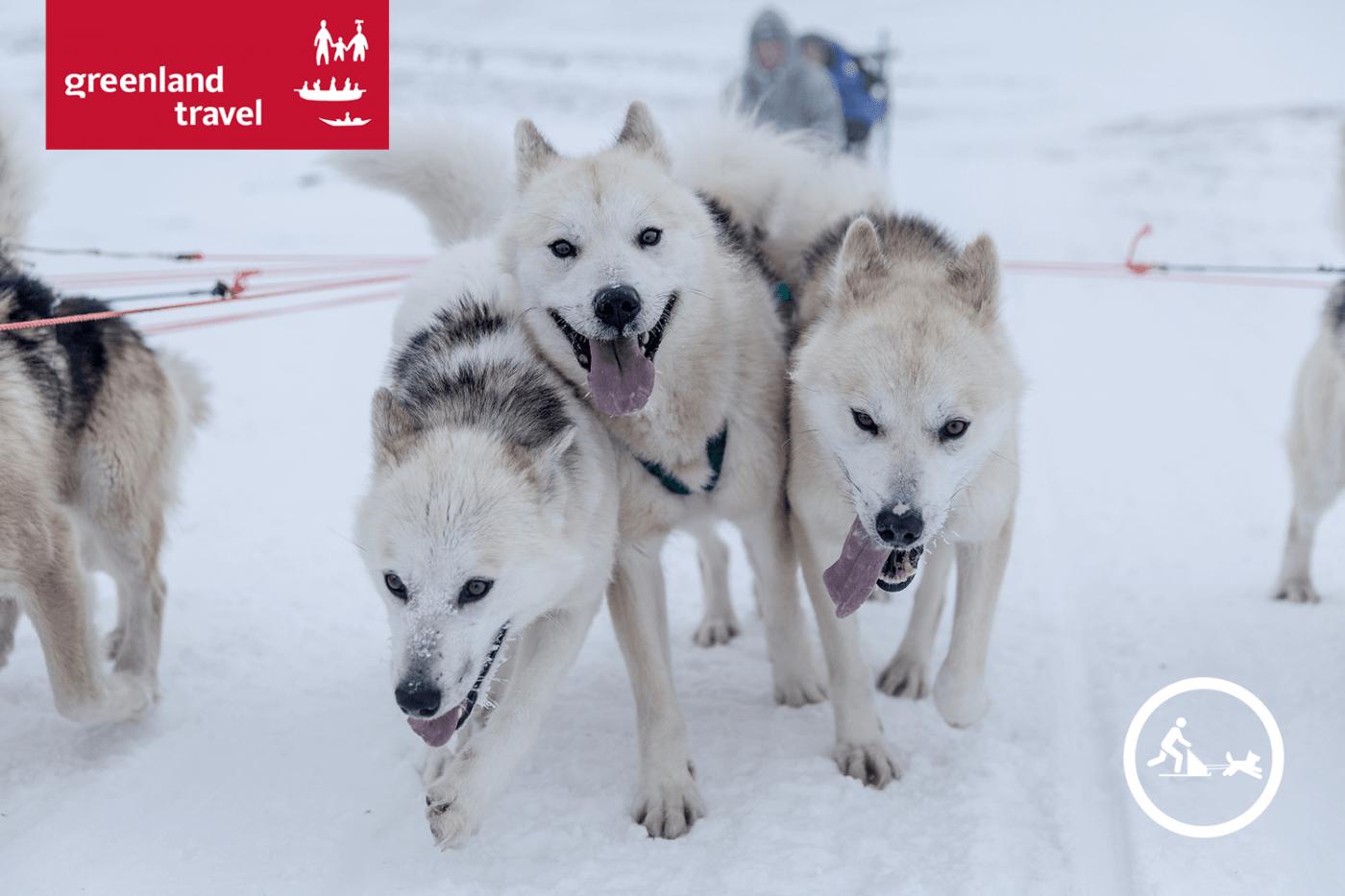 Grønlands Rejsebureau: Vinterweekend i særklasse