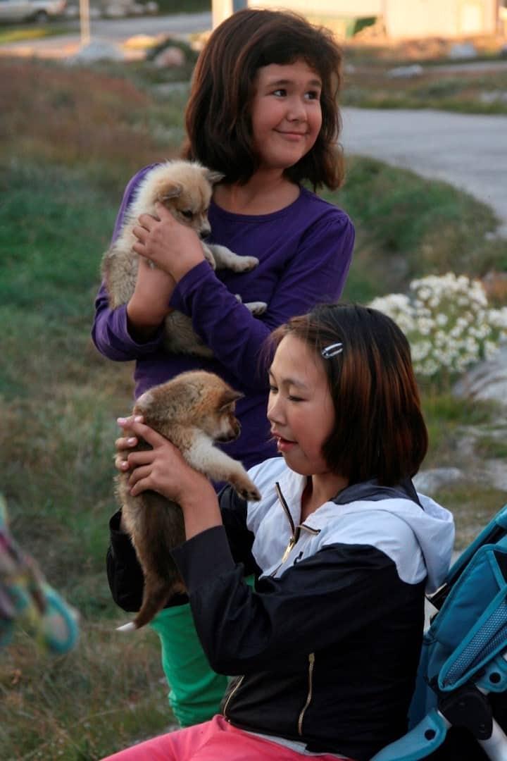 Oqaatsut Puppies. By Leif Taurer