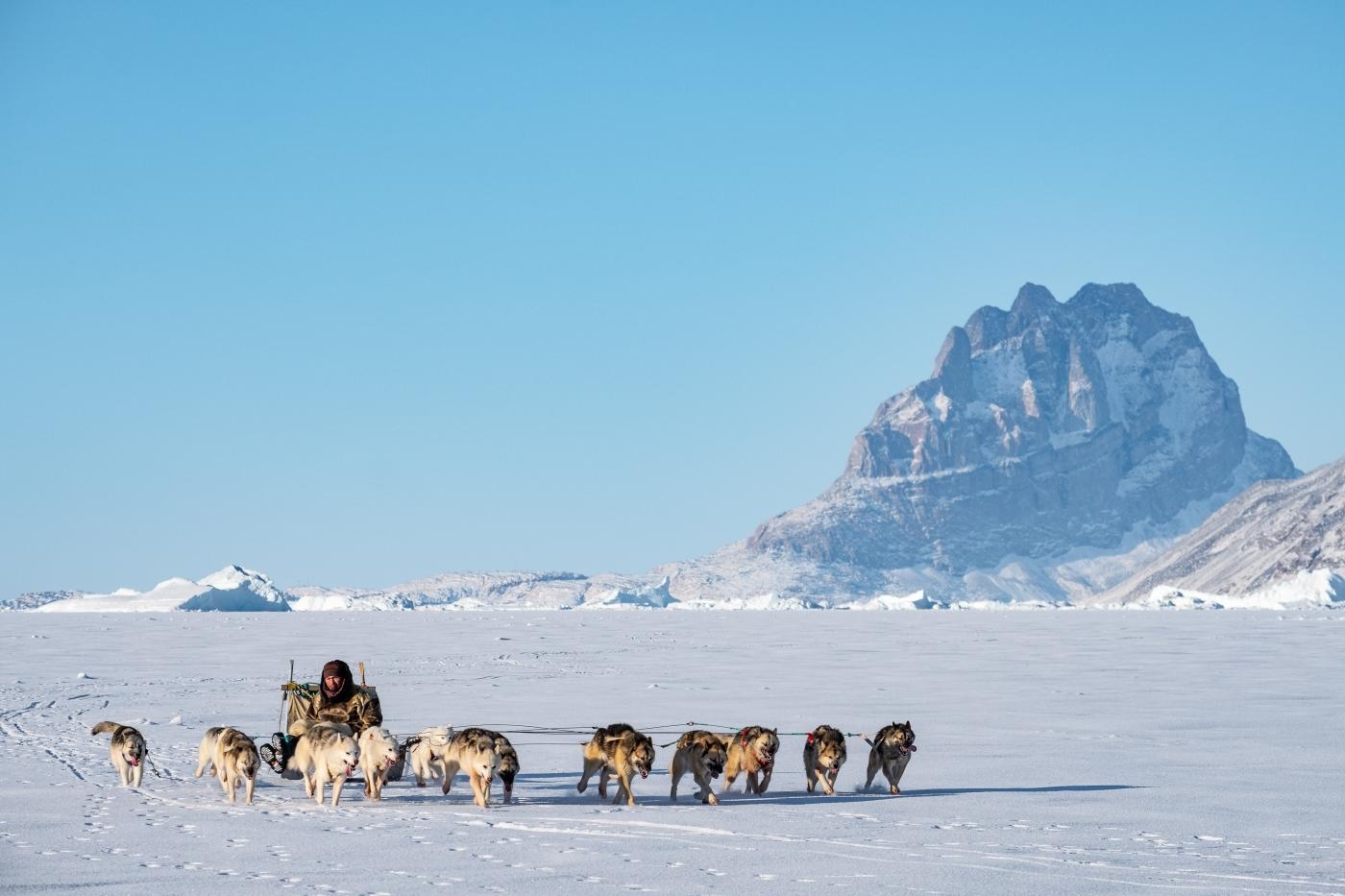 Dogsled near the Uummannaq mountain. Photo by Lasse Kyed