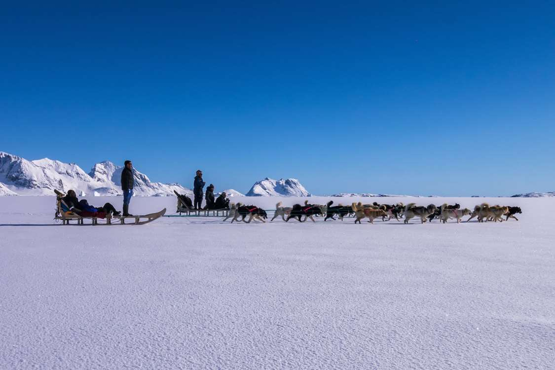 Two dogsleds on ice. Photo by Pirhuk - Greenland Expedition Specialists
