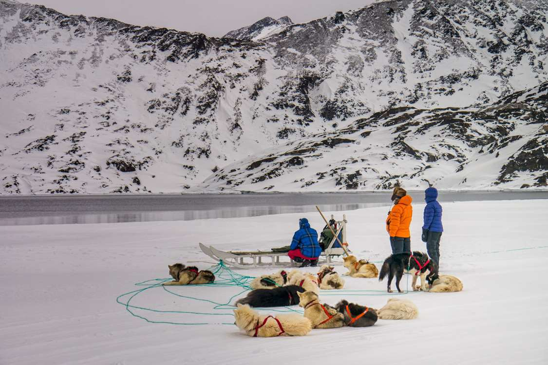 Sleddogs and mushers taking a break on the ice in East Greenland. Photo by Pirhuk - Greenland Expedition Specialists