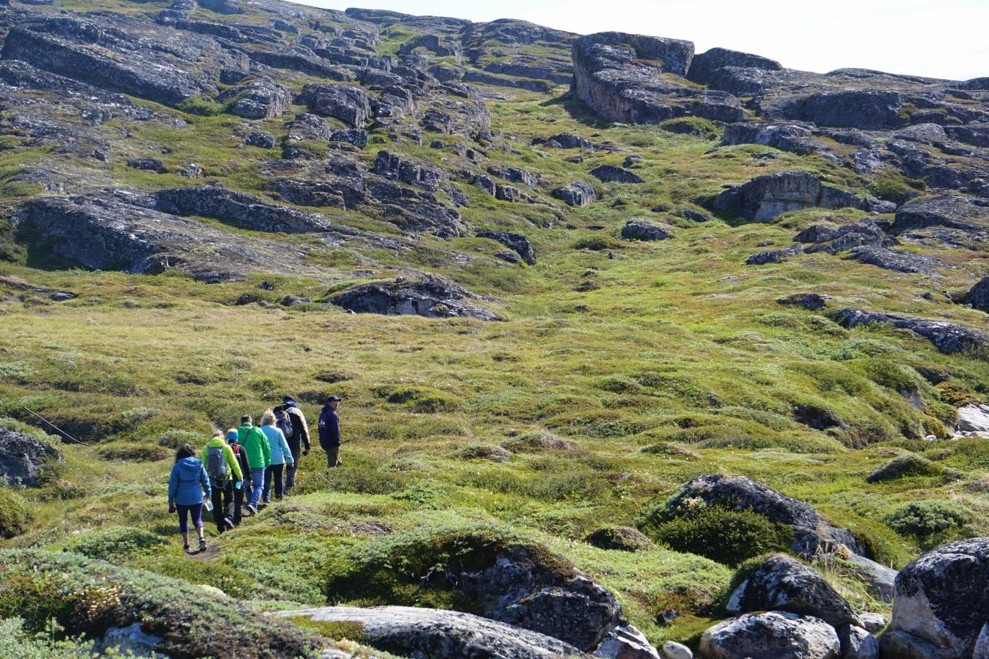 DBT - Akulliit. Tourists on a hike in Summer. Photo by DiskoBay Tours