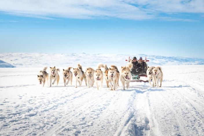 Dogsledding in Kangerlussuaq. Photo by Anders Beier - Visit Greenland