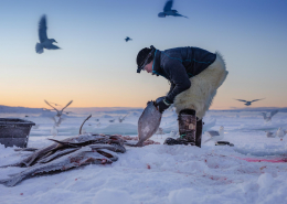 Ice Fishing Scene in Ilulissat. Photo - Aningaaq R. Carlsen, Visit Greenland