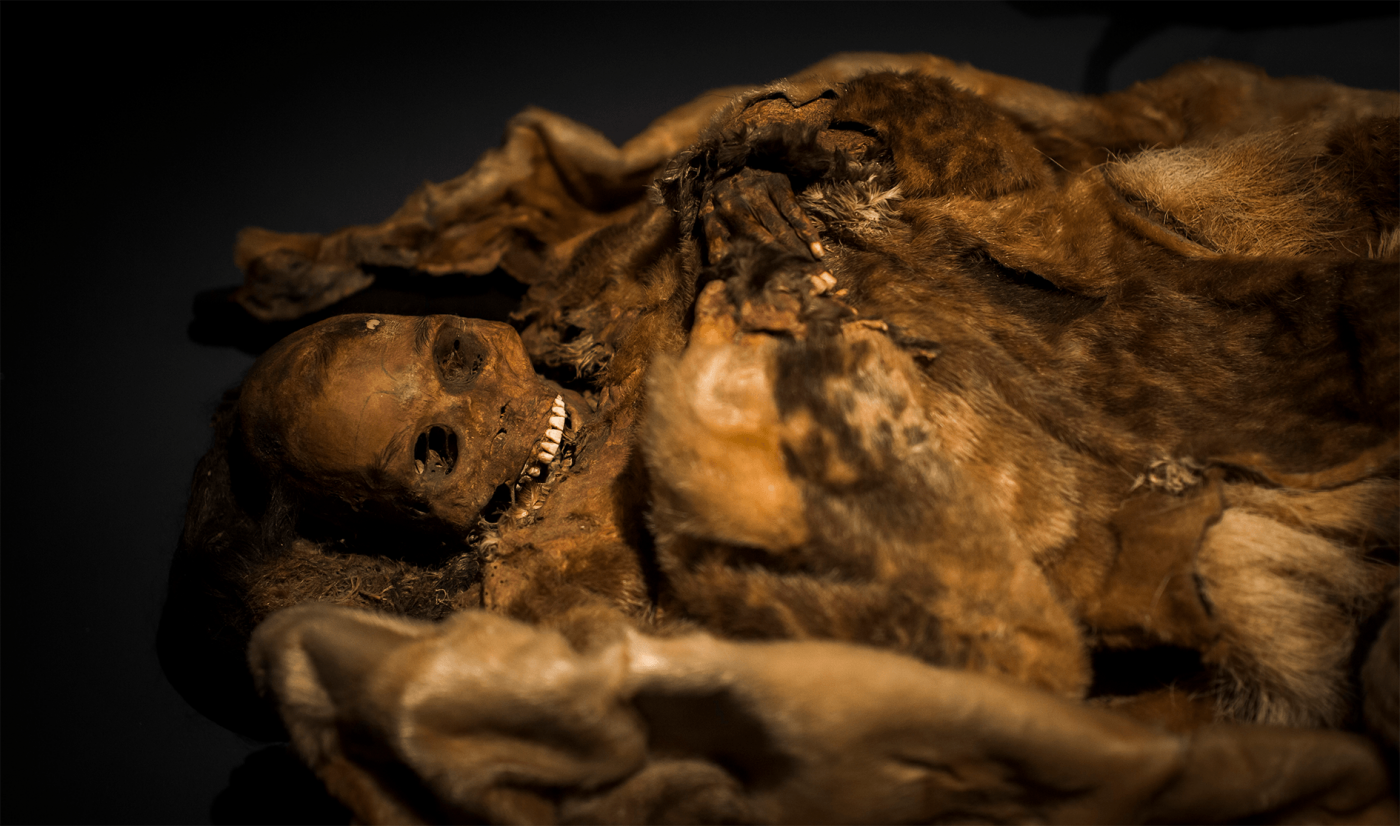 Facial tattoo mummy in Greenland National Museum