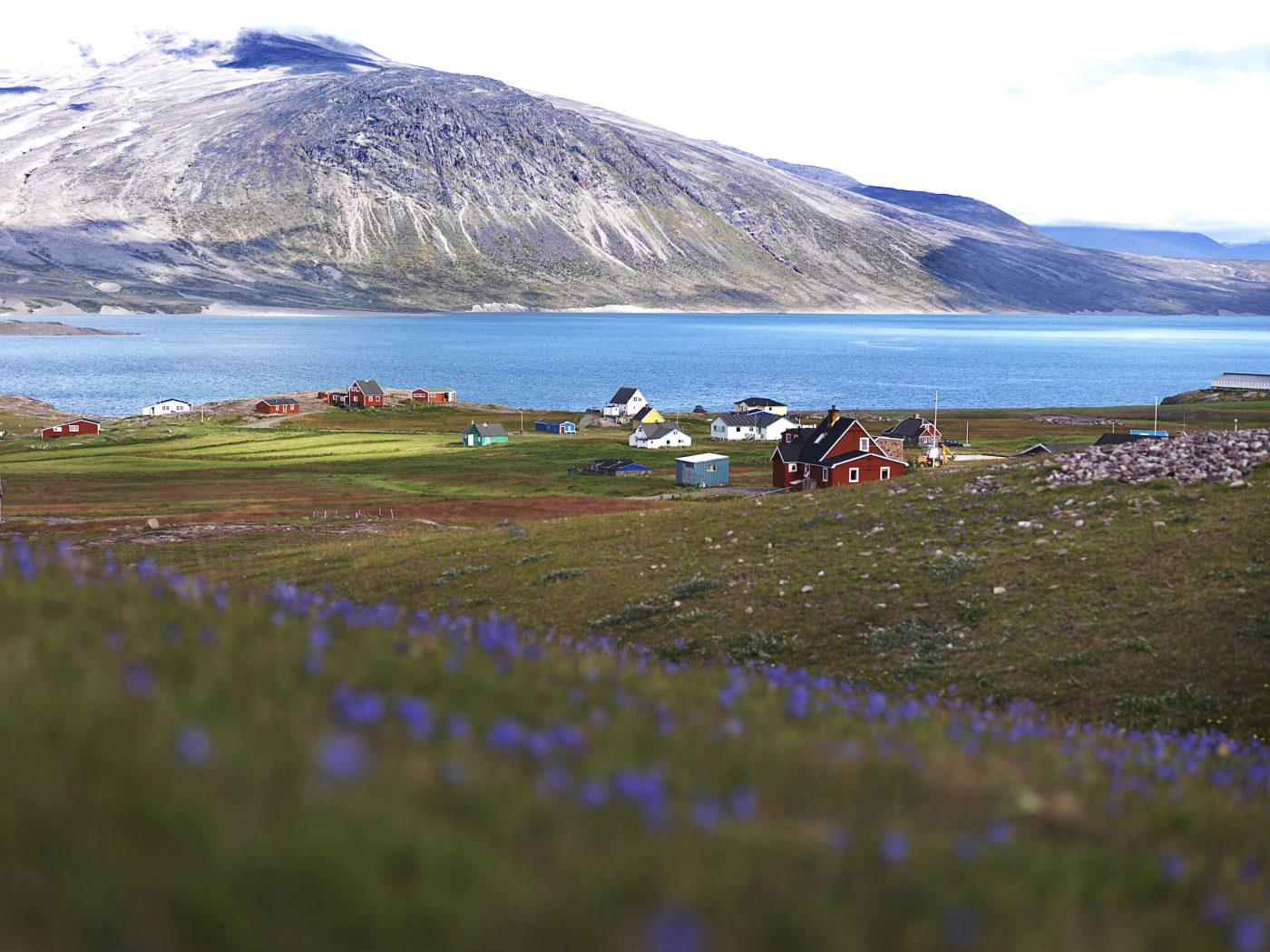 A view over parts of Igaliku on a summer day in South Greenland. Photo by David Trood 2