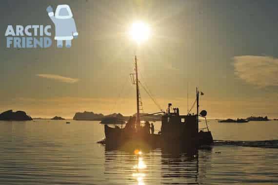 Arctic Friend: Budget rundrejse Grønland