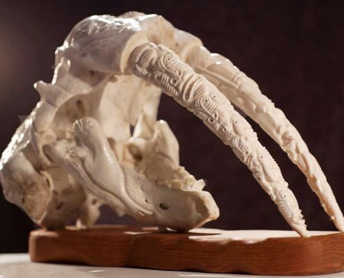 Walrus scull art in Nuuk Art Museum, by Rebecca Gustafsson