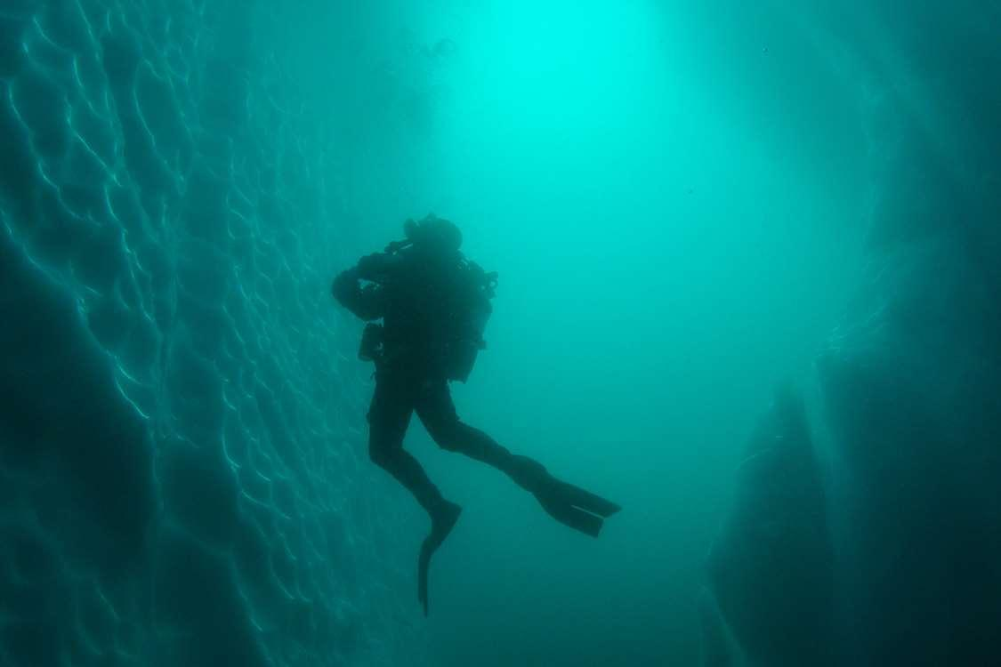 Diver exploring glaciers from the water. Photo by Arctic Dream, Visit GreenlandArctic Dream Travellodge Greenland 12