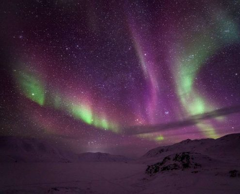 wogac-northern-lights