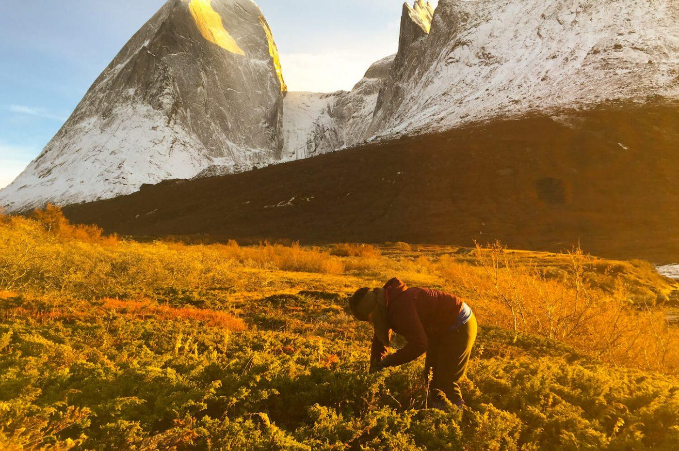 Hiker exploring the nature near Tasermiut Fjord. Visit Greenland