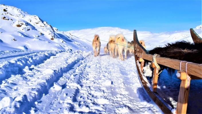 Dogsledding on a sunny day in East Greenland. Photo by Tasiilaq Tours - Visit Greenland