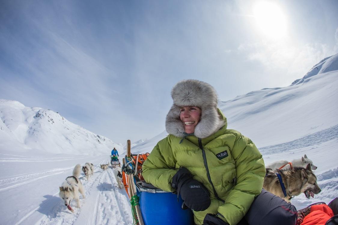 Greenland Tours: Arktische Schlittenhunde