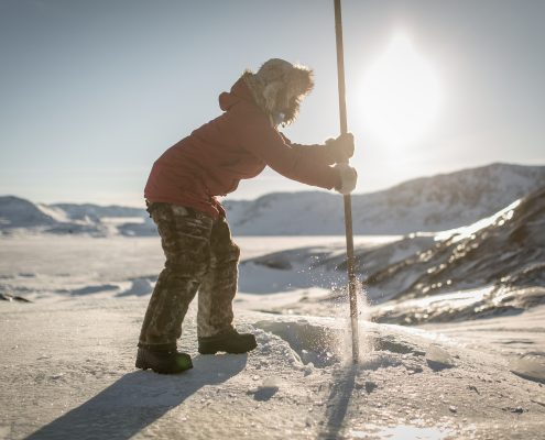 A Chinese tourist hacking ice on a dog for drinking water during a sledding trip in the Disko Bay in Greenland
