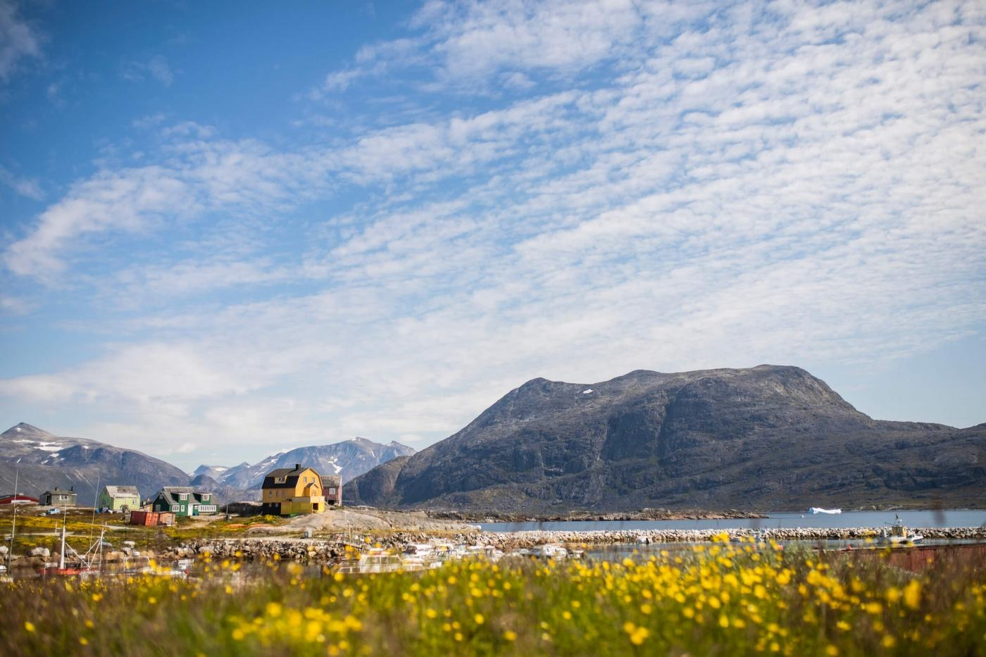 The coloured houses of Nanortalik in the distance, summer in South Greenland. Photo by Aningaaq R Carlsen - Visit Greenland