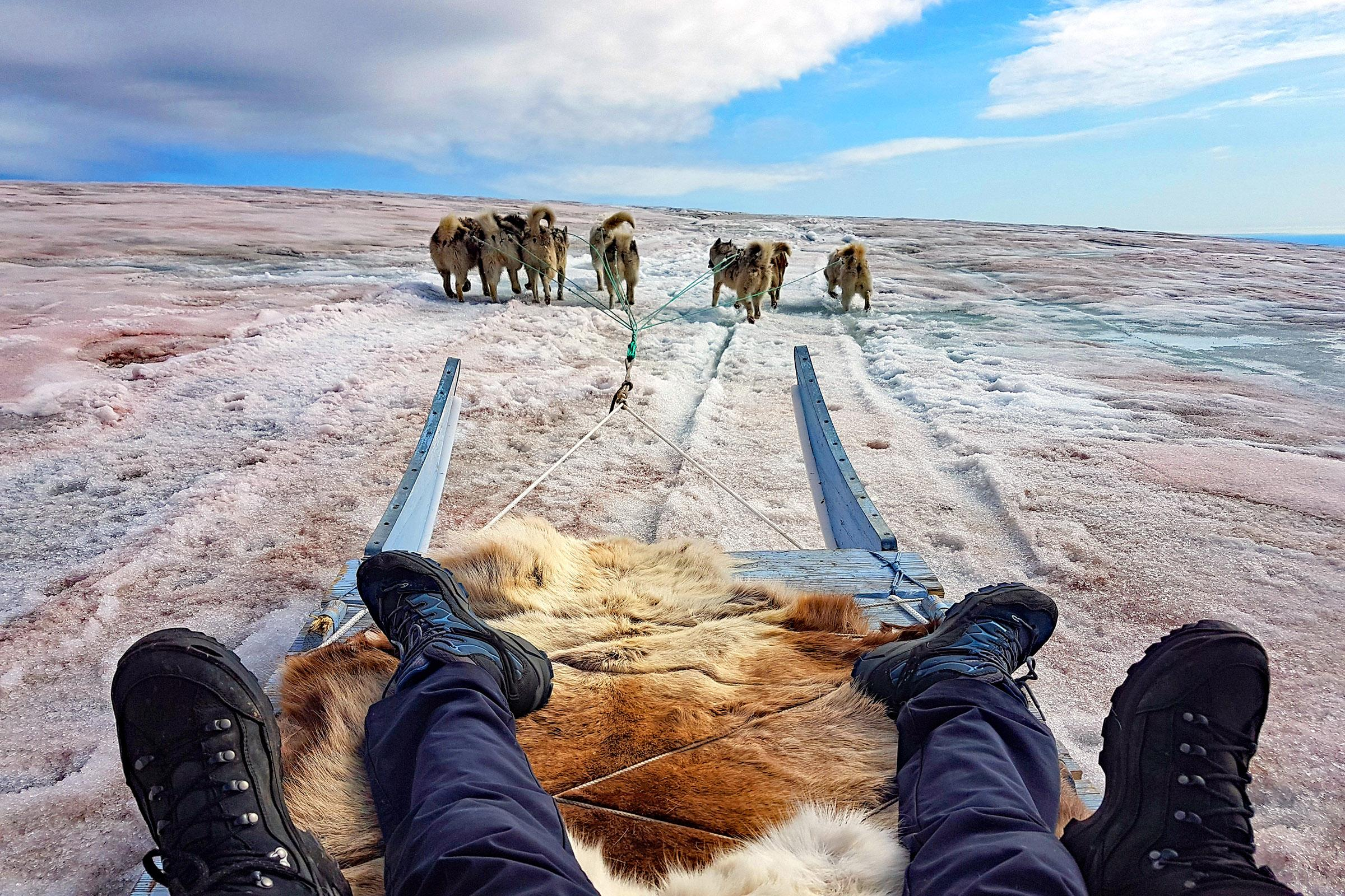 Husky sledding in Greenland with kids. Photo by Jurga Rubinovaite.