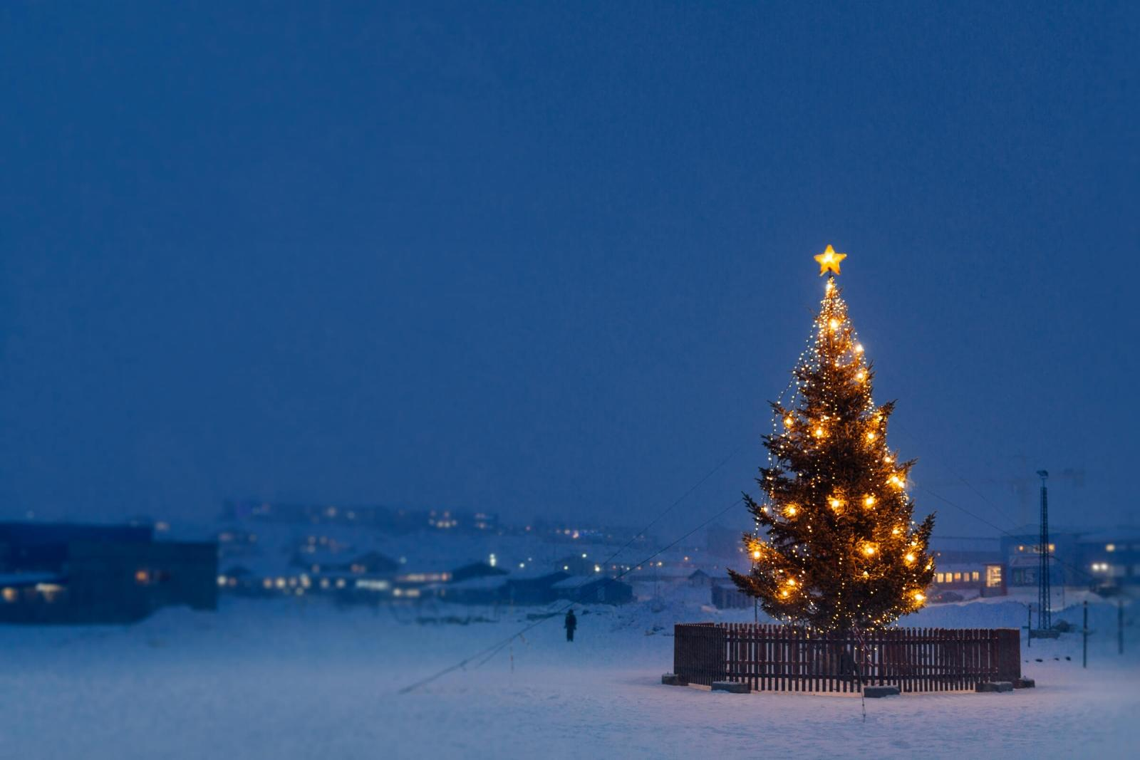 A christmas tree in Nuuk in Greenland on a snowy december afternoon. Photo by Rebecca Gustafsson