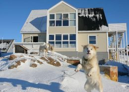 Bed and breakfast Paa and Jannik. Visit Greenland
