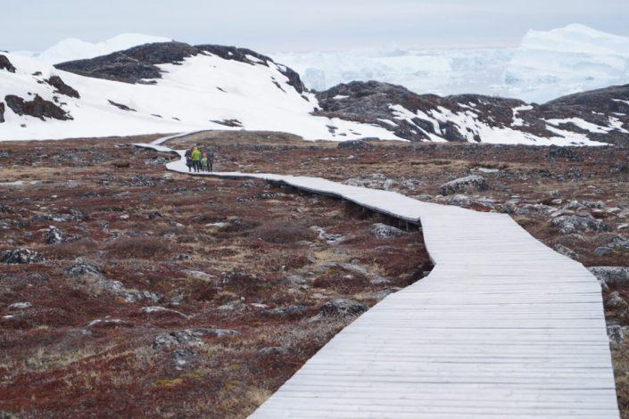 Tourists walking on Ilulissat Icefjord UNESCO trail. Photo by Diskobay Adventures