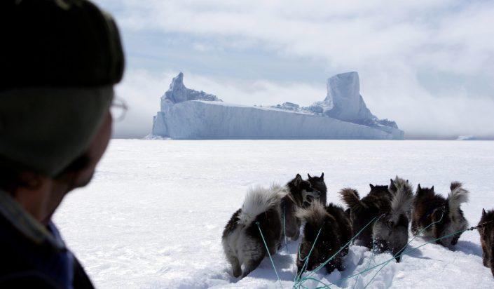 Dog sledding in Ittoqqortoormiit. Photo by Jørgen Chemnitz