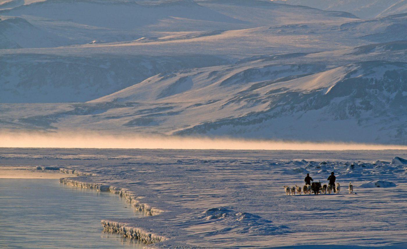 Dog sledding in the north east of Greenland. Photo by Magnus Elander