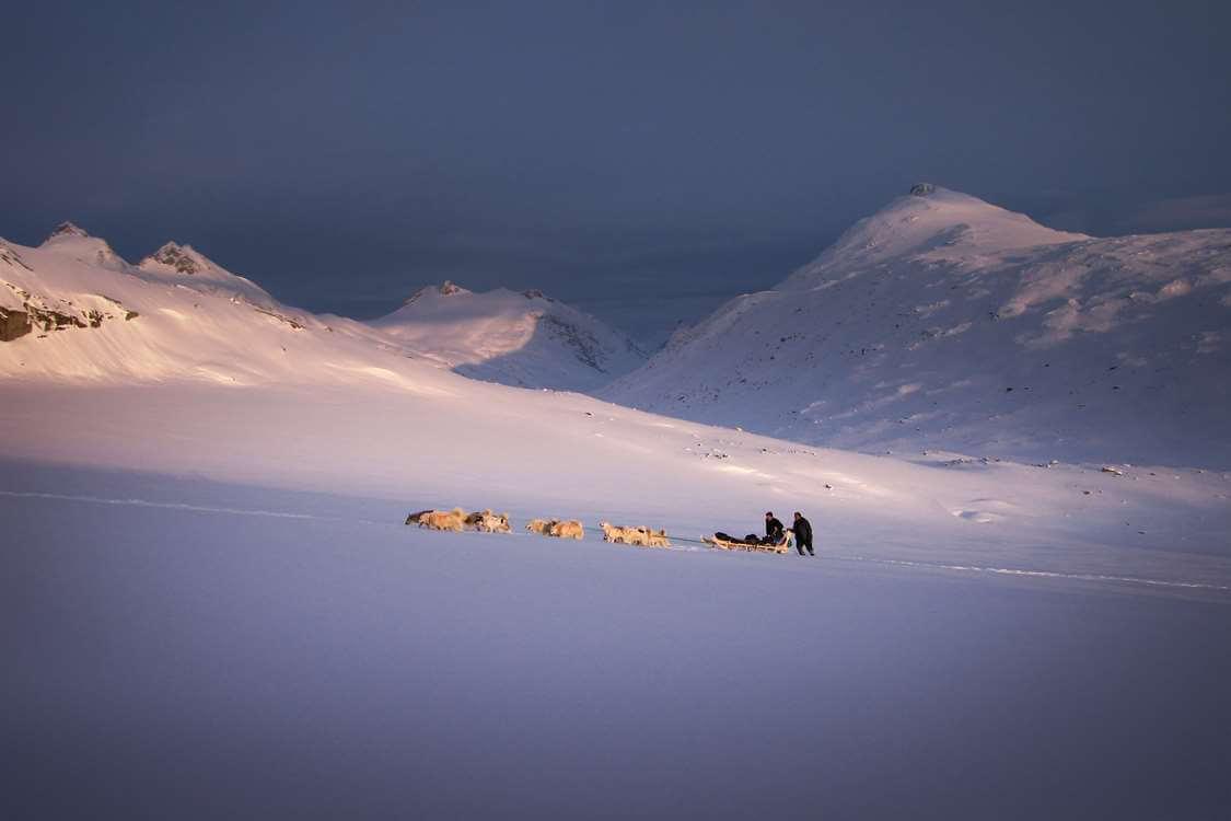 Two people dogsledding near Qeqertarsuaq. Photo by SikuAput, Visit Greenland