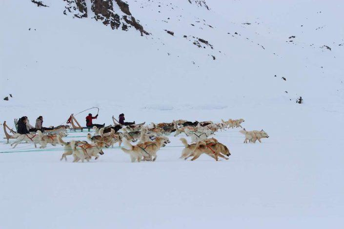 East Greenland Tours 04