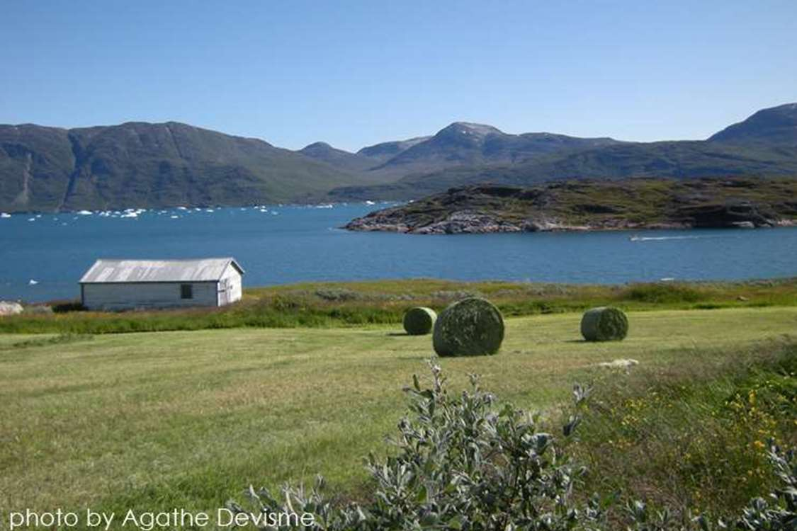 View of Ipiutaq Guest Farm and the South Greenland fjord with a boat passing by in Summer. Photo by Agathe Devisme