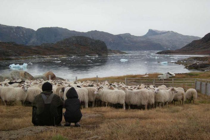 Father and daughter enjoying the view of sheep and the South Greenland fjord with small icebergs. Photo by Agathe Devisme