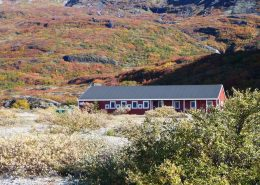 Summer at Narsarsuaq Hostel in South Greenland. Photo by Blue Ice Explorer