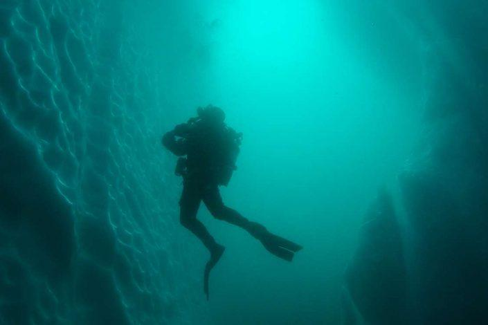 Diver exploring glaciers from the water. Photo by Arctic Dream, Visit Greenland