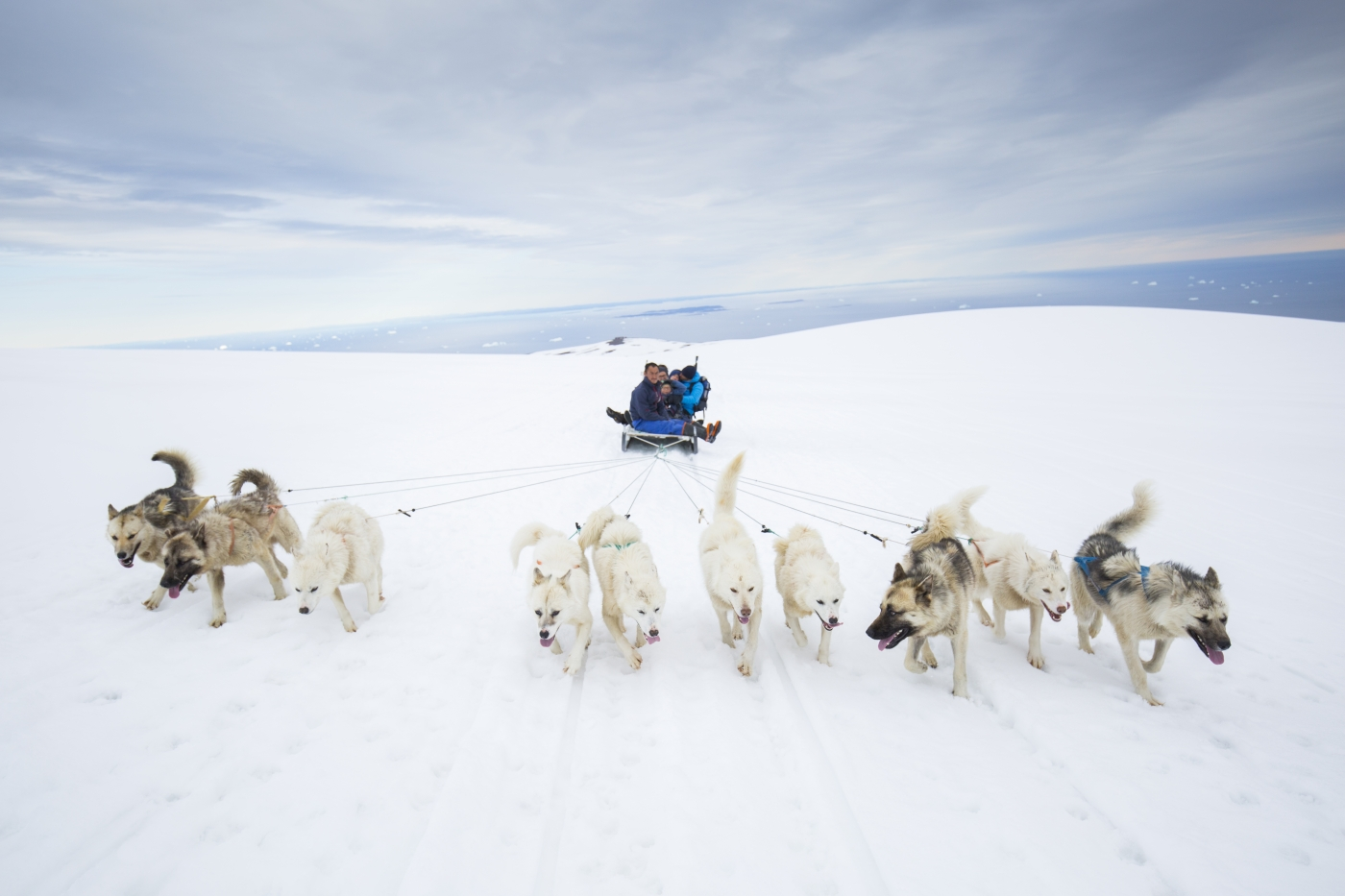 Dog Sled trip at the top of Lyngmark Glacier in the summertime. Photo Henrik Kaarsholm – Hotel Disko Island, Visit Greenland