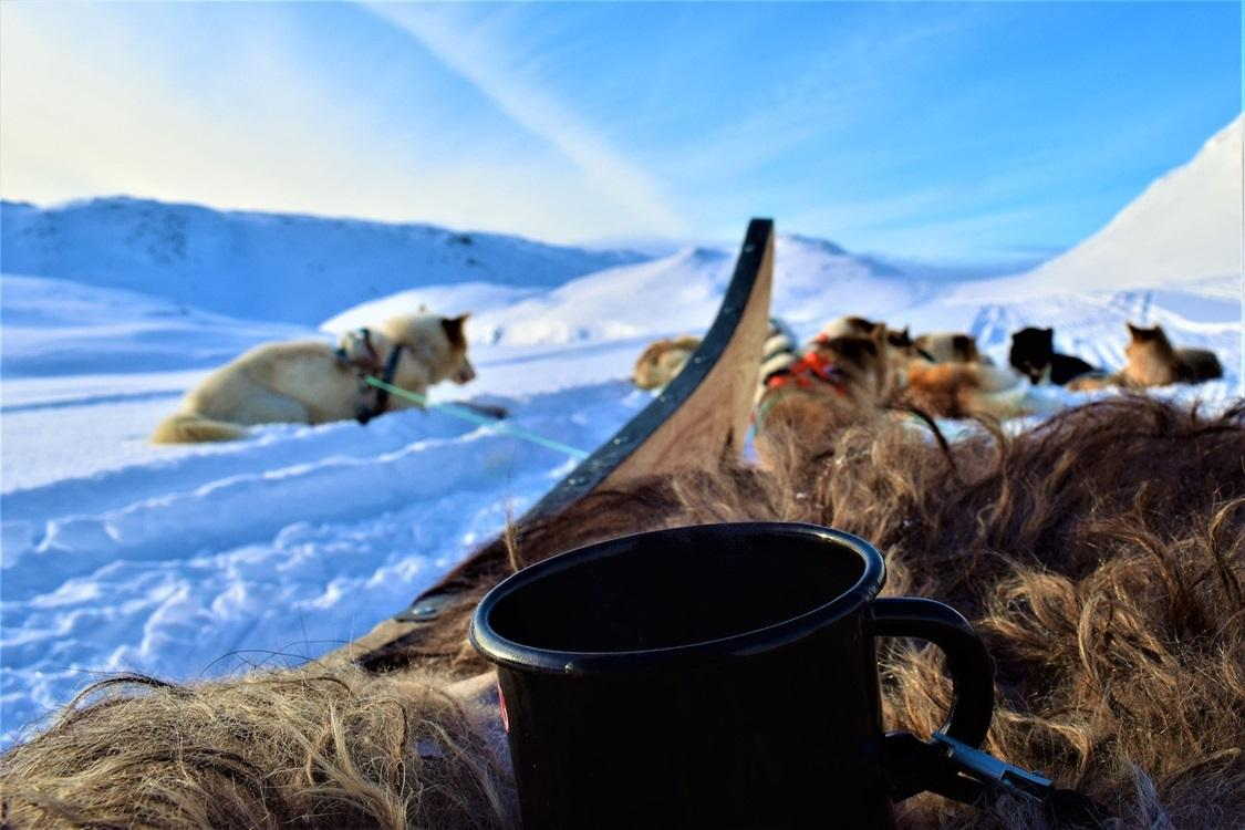 Coffee break on a dogsledding tour in East Greenland. Photo by Tasiilaq Tours