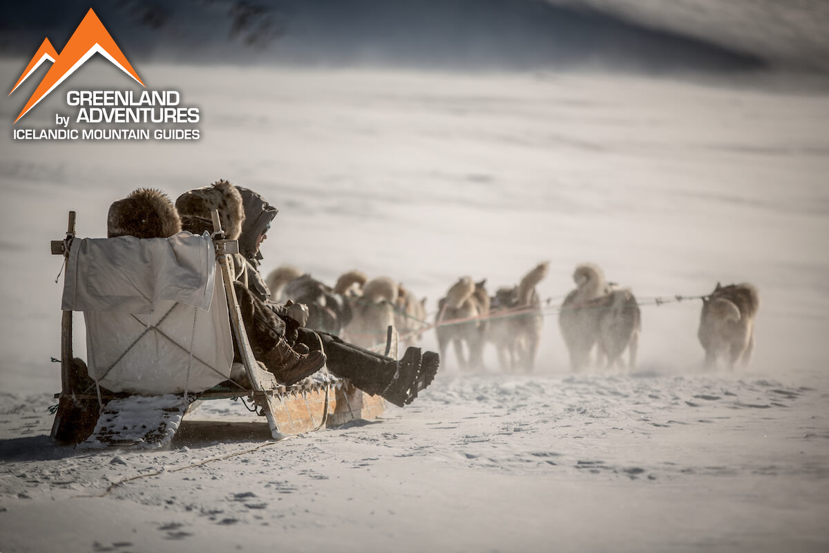 Icelandic Mountain guides: Dog Sledding and Northern Lights