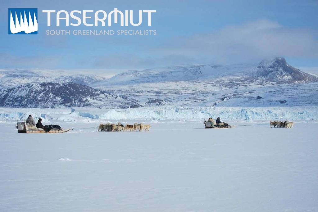 Tasermiut - Thule dog sledding expedition