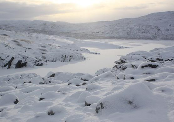 Large snowy landscape. By Visit Greenland