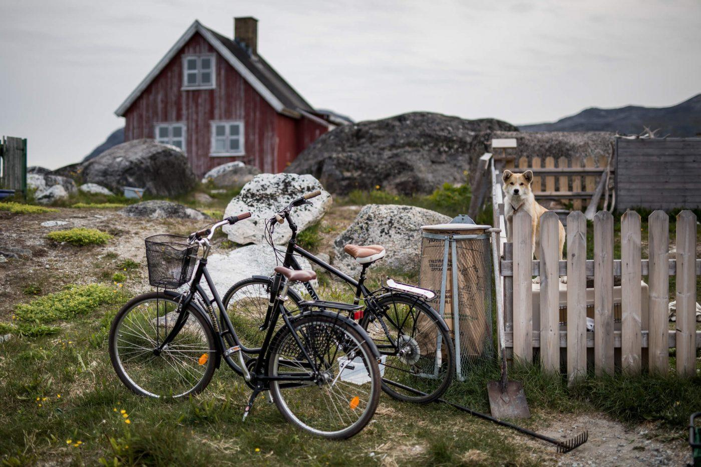Two bikes parked outside a house in Nanortalik while a dog stares at the photographer in South Greenland. Photo by Mads Pihl.