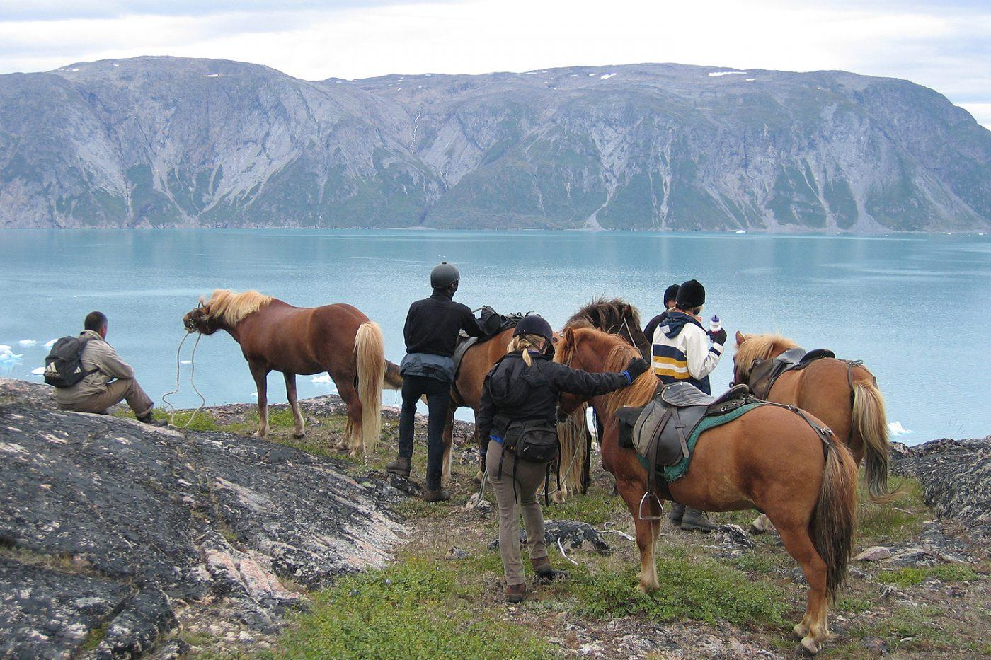 Grönlandsresor – Horseback riding in South Greenland, 8 days