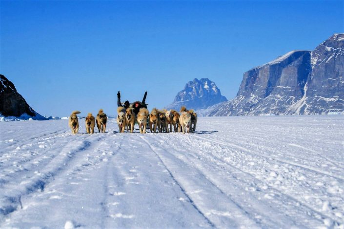 Dog sledding Uummannaq Fjord Tours