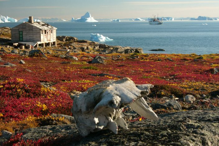 A hut on greenlandic filed during early autumn. Photo by Hannes Grobe