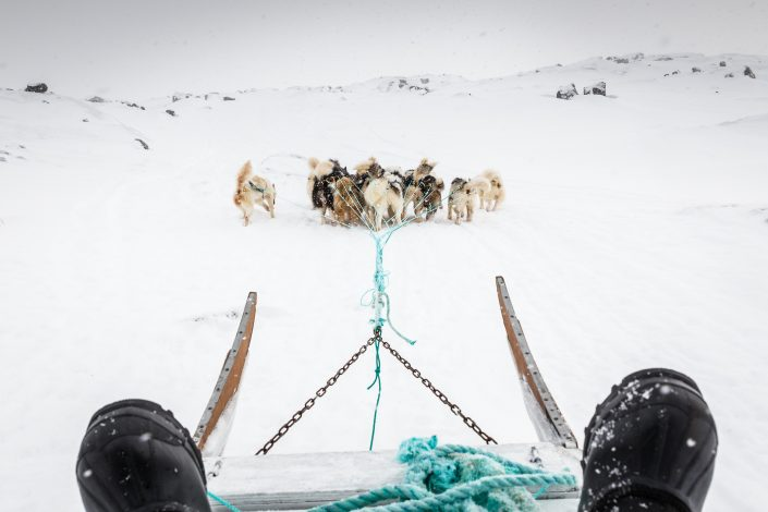 Dogsledding POV. Photo by Samuel Letecheur - Visit Greenland