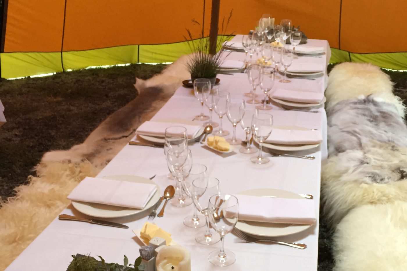 Set table ready for dinner a comfortable tent. Photo by Arctic Nomad