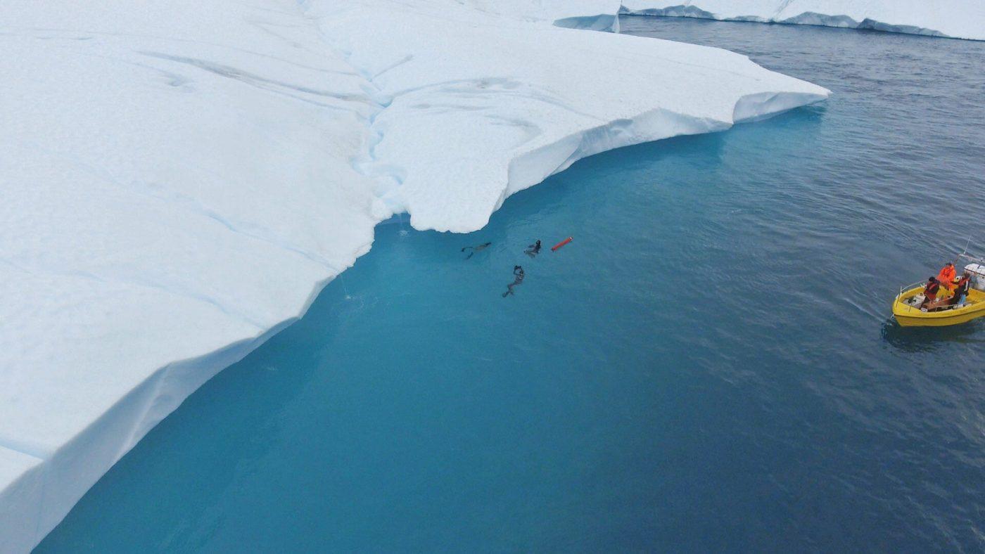Kiki Bosch freedives under a giant iceberg of the Ilulissat Icefjord
