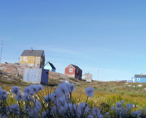 Tasiusaq northern arctic experience