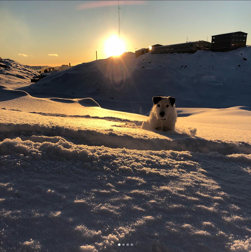 @emiliebinzer - En eskimo i stiletter