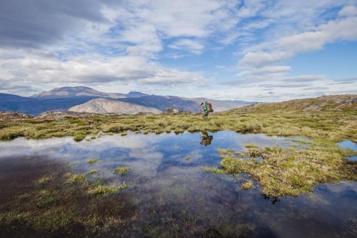 Hiker navigates a bog marsh along the Arctic Circle Trail. Photo by Lina Stock.