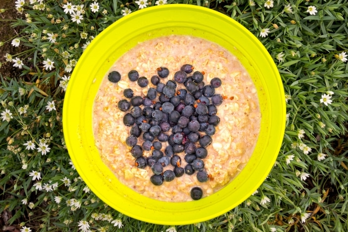 Wild Blueberries collected on the Arctic Circle Trail enhance a bowl of oatmeal. Photo by Lisa Germany.