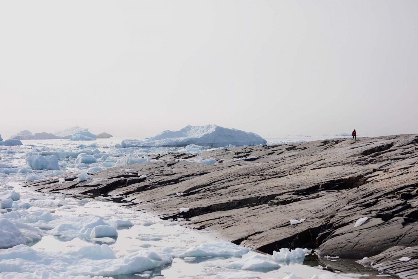 Artist walks along the shore, looking small amongst the ice field. Photo by Jessie Brinkman Evans - Visit Greenland